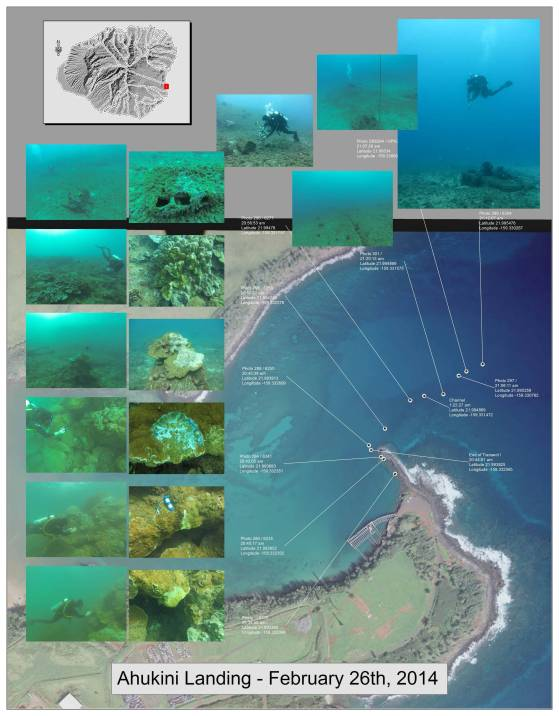 map of scuba diving surveys showing pictures of coral reef