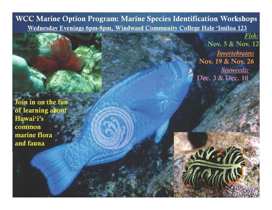 Species Identification Flier