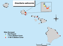 GRACILARIA map