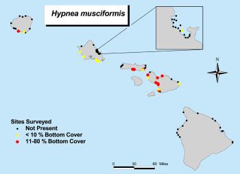 Hynea map